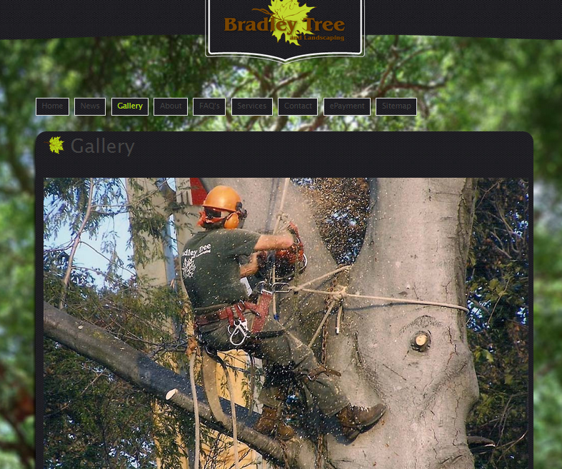 Bradley Tree & Landscaping